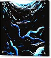Dark Blue Acrylic Print