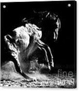 Dark Dance Acrylic Print