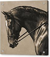Dark Dressage Horse Aged Photo Fx Acrylic Print
