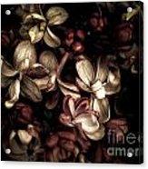 Dark Flowers Acrylic Print