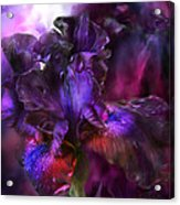 Dark Goddess Acrylic Print