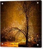 Dark Icy Night Acrylic Print by Sofia Walker