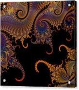 Dark Paisley Tails Acrylic Print