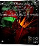 Dark Red Day Lily And Quote Acrylic Print