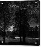 Darkenwalk Acrylic Print