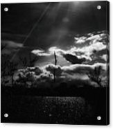 Darkest Before The Dawn Acrylic Print