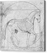 Da Vinci Horse Piaffe Grayscale Acrylic Print