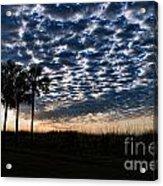 Dawn Silhouettes Acrylic Print