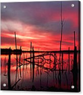 Dawns Preview Acrylic Print