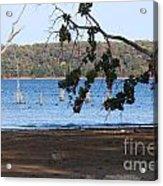 Day At The Lake Acrylic Print
