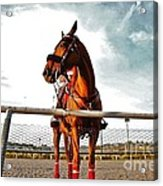 Day At The Track Acrylic Print