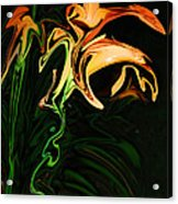 Day Lily At Night Acrylic Print