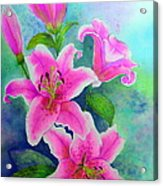 Day Lily Delight Acrylic Print