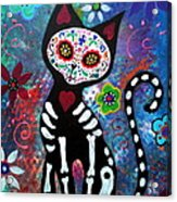 Day Of The Dead Cat Acrylic Print
