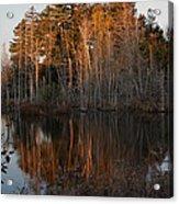 Daybreak At The Pond Acrylic Print