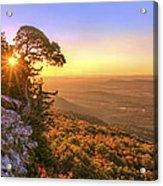 Daybreak On Mt. Magazine - Arkansas - Cedar Tree - Autumn Acrylic Print