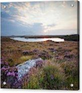 Daybreak Over Connemara Bog Acrylic Print