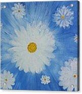 Daydreamin Daisy Acrylic Print
