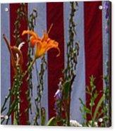 Daylily And Old Glory Acrylic Print