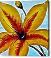 Daylily Expressive  Brushstrokes Acrylic Print