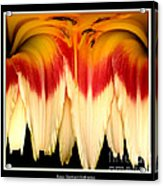 Daylily Flower Abstract 2 Acrylic Print