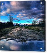 Dead End Acrylic Print by Phil Koch
