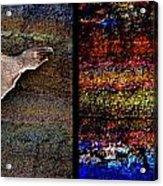 Dead Fish Lives 2a Acrylic Print
