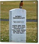 Dead Robin Acrylic Print