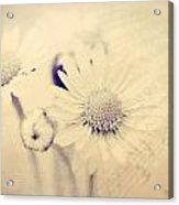 Dead With Sorrow Acrylic Print