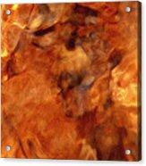 Death In Autumn Acrylic Print