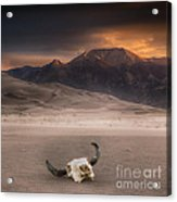 Death In The Desert Acrylic Print