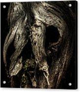 Death Mask Acrylic Print