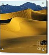 Death Valley California Gold 6 Acrylic Print