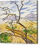 Death Valley- California Sketchbook Project Acrylic Print