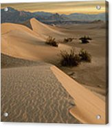 Death Valley Mesquite Flat Sand Dunes Img 0177 Acrylic Print