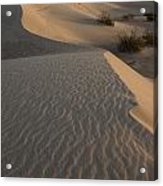Death Valley Mesquite Flat Sand Dunes Img 0181 Acrylic Print