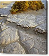 Death Valley Mudflat Acrylic Print
