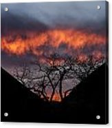 Death Valley Sunset Acrylic Print