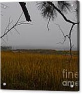 December Fog Acrylic Print