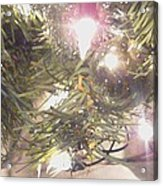 Deck The Halls 2011 Acrylic Print by Feile Case