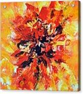 Declaration D'amour Acrylic Print