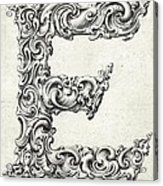 Decorative Letter Type E 1650 Acrylic Print