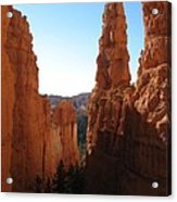 Deep Down - Bryce Canyon Acrylic Print
