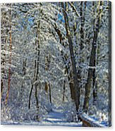 Deep Freeze Acrylic Print