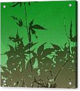 Deep Green Haiku Acrylic Print