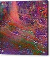 Deep In The Rain Forest Acrylic Print