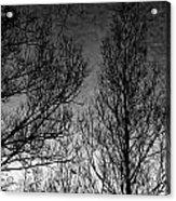Deep Sky Acrylic Print