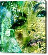 Deep Woods Wanderings Acrylic Print
