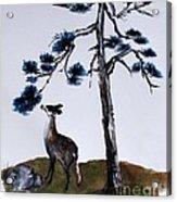 Deer And Pine Acrylic Print