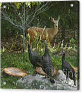 Deer And Wild Turkeys Acrylic Print